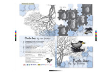EAGLE-GRAFIKA-OBAL-CD-TISKOVA-DATA